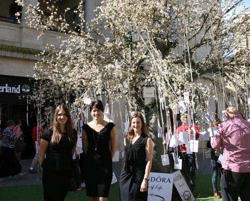 Pandora Tree of Life Campaign