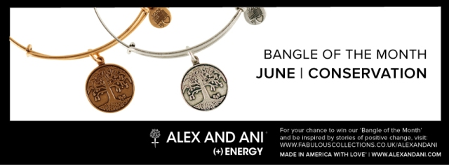 Bangle-of-the-month_JUNE_facebook