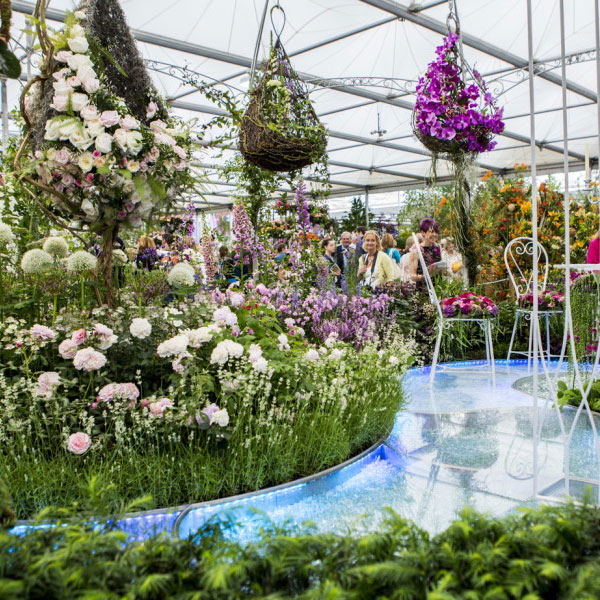 The Garden at The Chelsea Flower Show