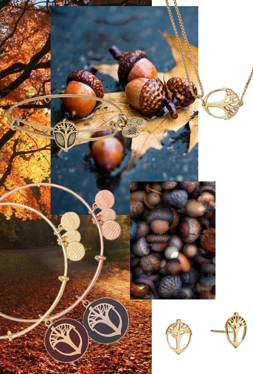 acorns-having-a-moment