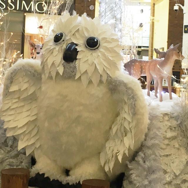 touchwood-owl