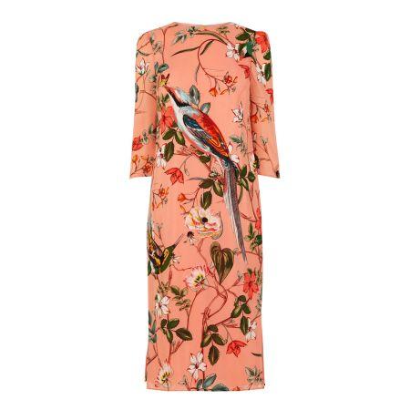 warehouse dress paradise prints